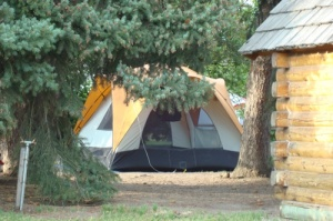 Tenting in the trees