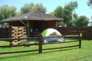 Tent Village & Photos of Campground Tent Sites - Missoula KOA