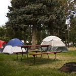 Tent Site Under the trees