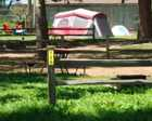 Tent Sites Click to See More!