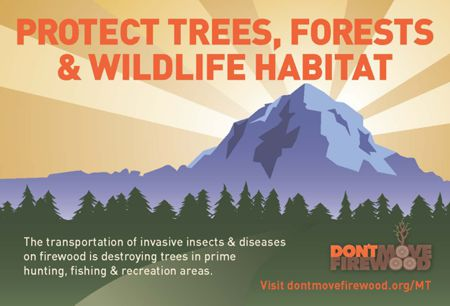 Help Stop Invasive Pests Don't Move Firewood.org