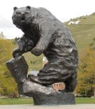 University of Montana Home of the Grizzlies